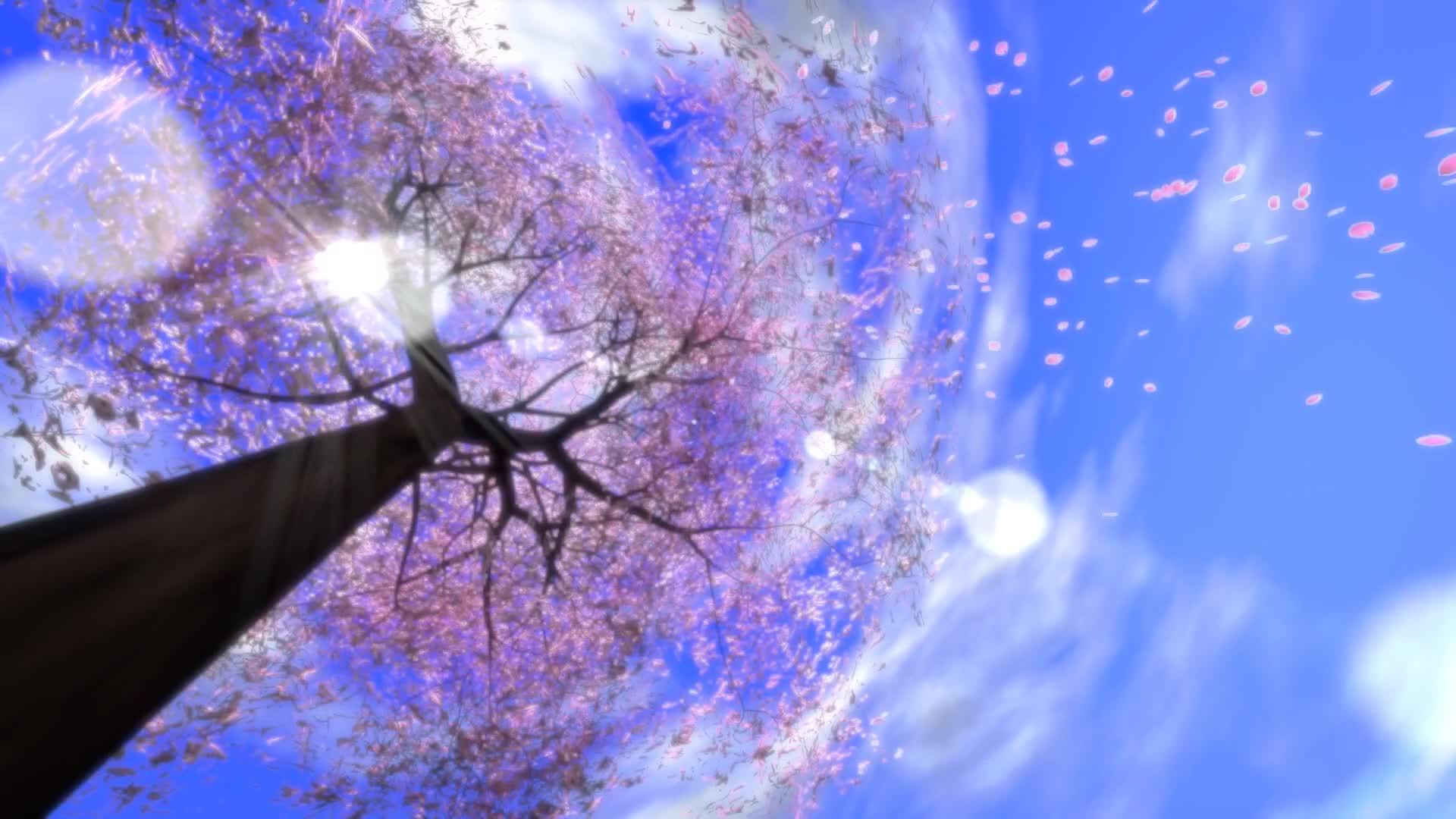 唯美浪漫樱花树花瓣飘落视频素材