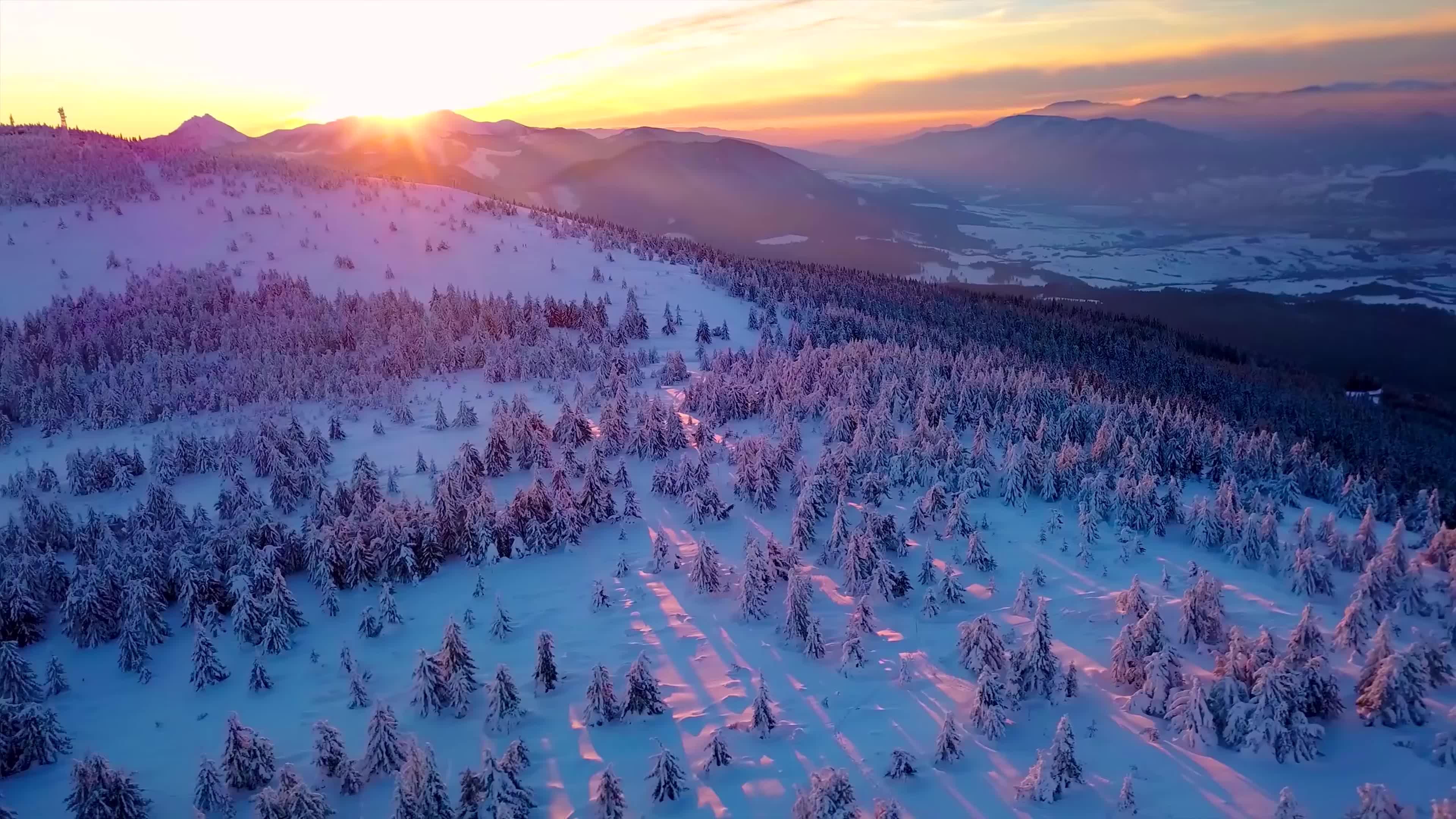 实拍冬季森林雪景视频素材
